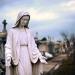 Quer ser santo? Seja de Maria!